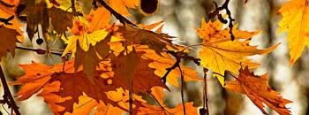 Есента е пред нас