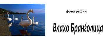 Изложба на Влахо Бранѓолица во Куманово