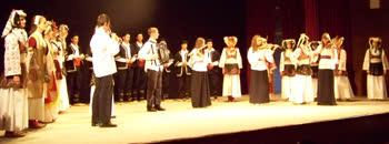 Српската заедница го прослави Видовден
