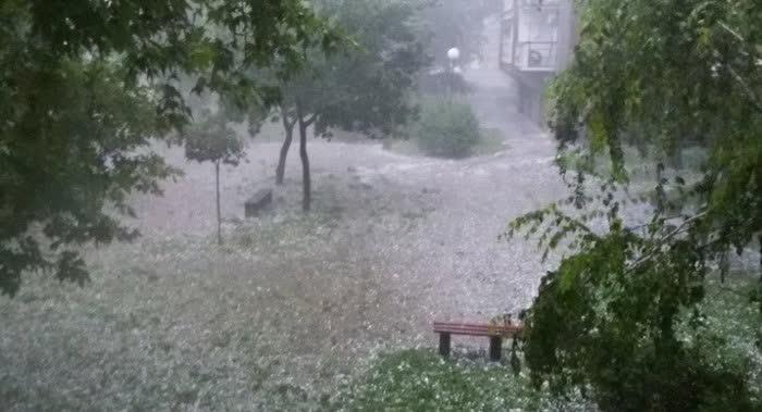Невреме со дожд и силен ветер во Ранковце, предизвикана голема штета