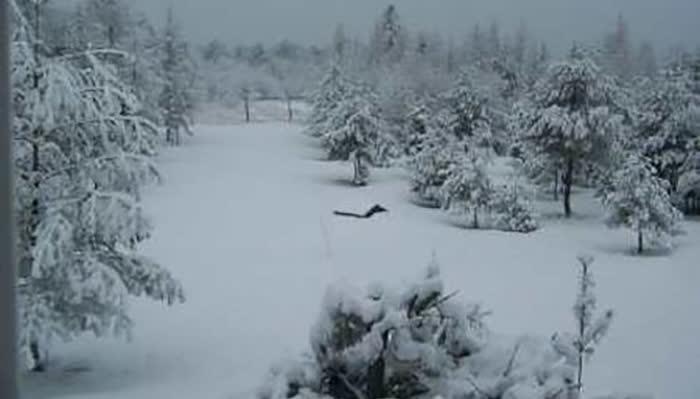 Непрооден патот Ранковце-Герман, снежни навеви до 2 метри