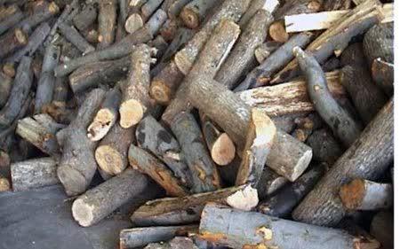 Уште една измама со огревно дрво во кумановско