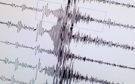 Земјотрес го стресе Куманово