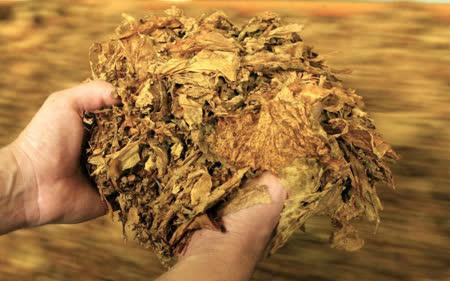 Фирма од Крива Паланка не платила акциза за увоз на тутун во висина од 1,6 милионид денари