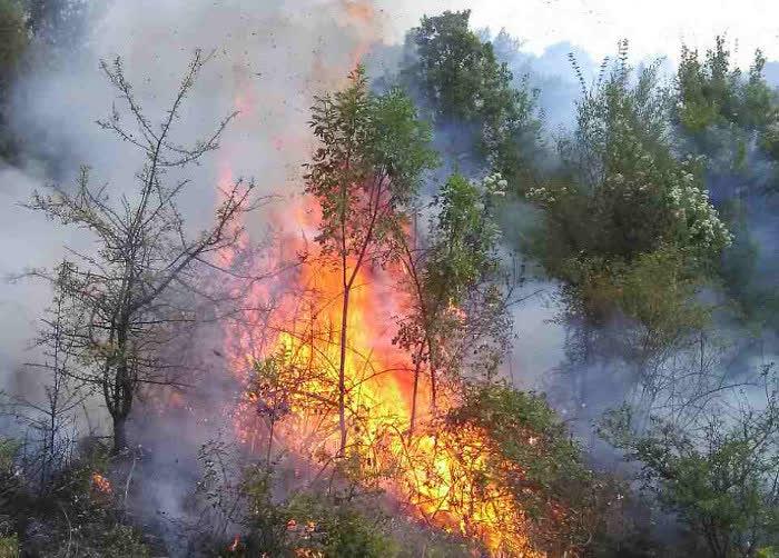 Ригорозни казни и затвор за намерно предизвикување на пожар, најавува Кумановската полиција
