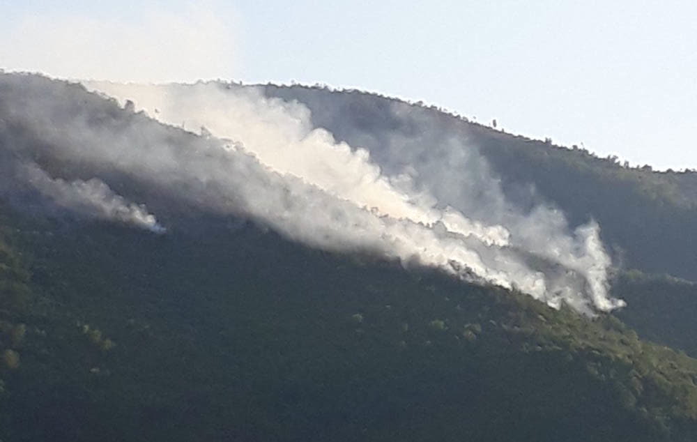 Пoжарот во Брест наближува до куќите, противпожарните авиони се на сервис