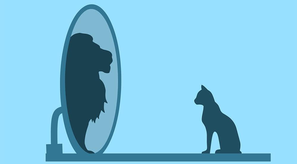 Како да препознаете еготист?